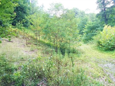 Red Hook Residential Lots & Land For Sale: Baxter Lot 1