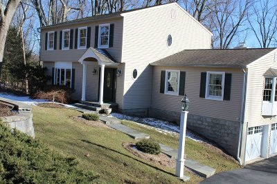 East Fishkill Single Family Home For Sale: 27 Willow Drive