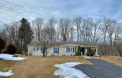 Poughkeepsie Twp Single Family Home For Sale: 1 Palm Circle