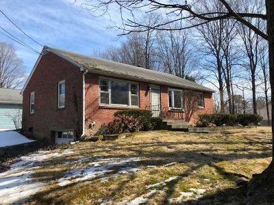 Poughkeepsie Twp Single Family Home For Sale: 44 Eileen Blvd