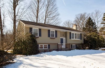 Poughkeepsie Twp Single Family Home For Sale: 12 Salem Ct