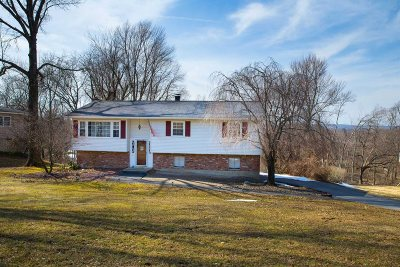 Dutchess County Single Family Home For Sale: 118 Cherrywood Dr
