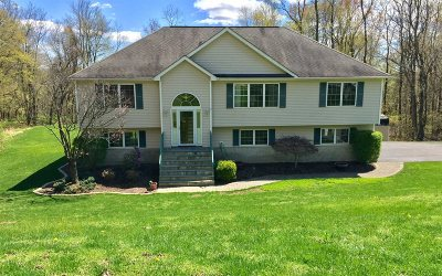 East Fishkill Single Family Home For Sale: 33 Tower Road
