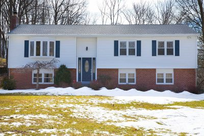 East Fishkill Single Family Home For Sale: 24 Dale Rd