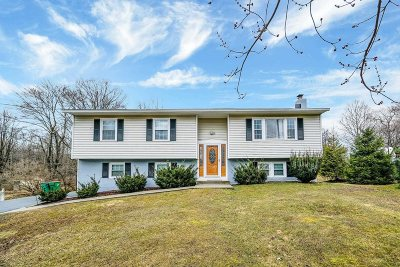 Dutchess County Single Family Home For Sale: 15 Mandalay Dr