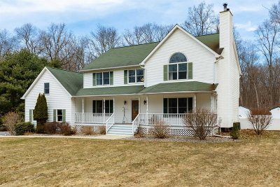 East Fishkill Single Family Home For Sale: 96 Cranberry Dr