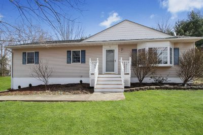 Wappinger Single Family Home For Sale: 20 Doyle Dr