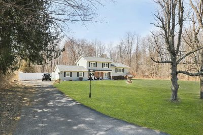 East Fishkill Single Family Home For Sale: 43 Friendly Way