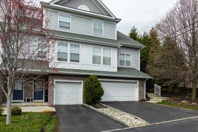 Dutchess County Condo/Townhouse For Sale: Waterview Dr.