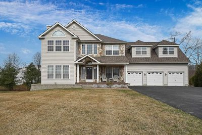 Fishkill Single Family Home For Sale: 21 Barberry Ln