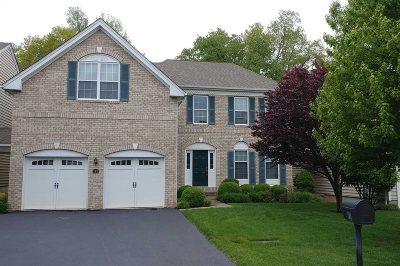 Fishkill Single Family Home For Sale: 161 Stony Brook Rd