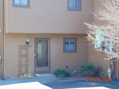 Fishkill Condo/Townhouse For Sale: 43 Hilltop Cir