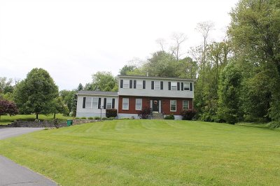 East Fishkill Single Family Home For Sale: 79 Marges Way