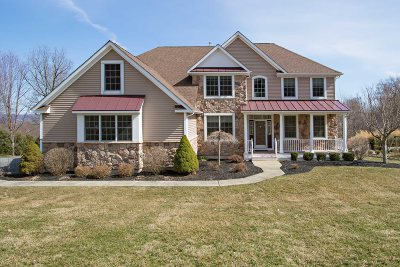 East Fishkill Single Family Home For Sale: 32 Ballymeade Rd