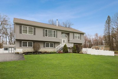Wappinger Single Family Home For Sale: 181 Widmer Rd