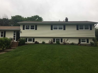 East Fishkill Single Family Home For Sale: 9 Verplanck Avenue