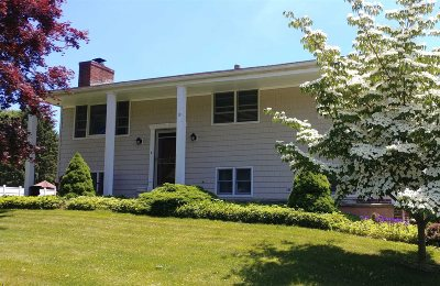Wappinger Single Family Home For Sale: 19 Maurice Dr