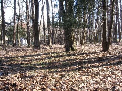 Poughkeepsie City Residential Lots & Land For Sale: 41 Alden Rd