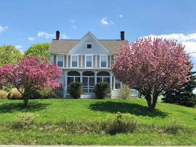 Germantown Single Family Home For Sale: 4552 Route 9g