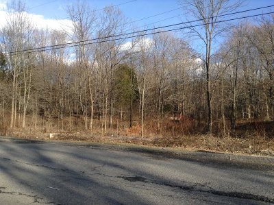 Hyde Park Residential Lots & Land For Sale: 58 Forest Dr