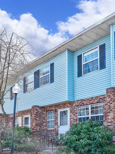 New Paltz Condo/Townhouse For Sale: 203 Briarwood Court