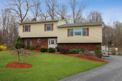Wappinger Single Family Home For Sale: 6 Norman Ct