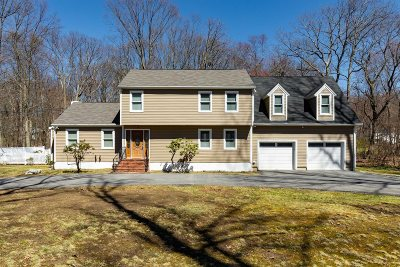 Dutchess County Single Family Home For Sale: 17 Geneva Dr