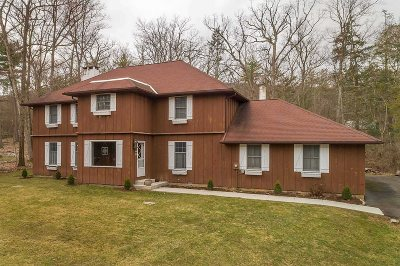 Hurley Single Family Home For Sale: 14 Holiday Dr