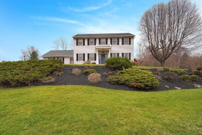 Dutchess County Single Family Home For Sale: 2 Bray Farm Lane