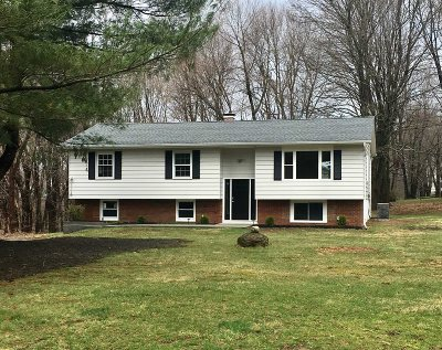 East Fishkill Single Family Home For Sale: 7 Saddle Ridge