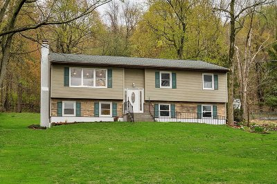 East Fishkill Single Family Home For Sale: 48 Hemlock Drive