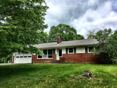 Single Family Home For Sale: 313 Round Lake Rd