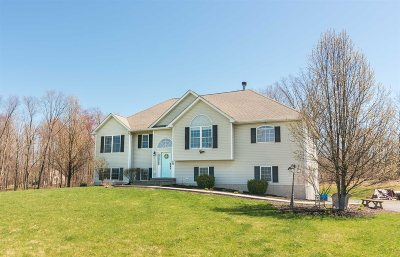 Dutchess County Single Family Home For Sale: 25 Frieda Ln