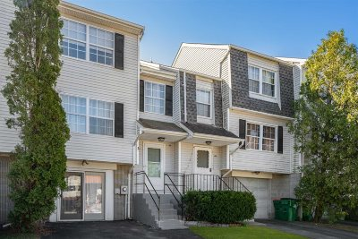 Dutchess County Condo/Townhouse For Sale: 66 Windmill Rd