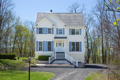 Dutchess County Single Family Home For Sale: 17 Deer Lick Ln