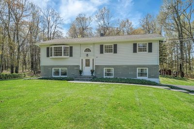 East Fishkill Single Family Home For Sale: 30 Julie Drive