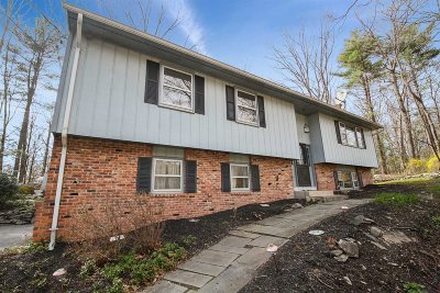 Dutchess County Single Family Home For Sale: 5 Hudson Dr