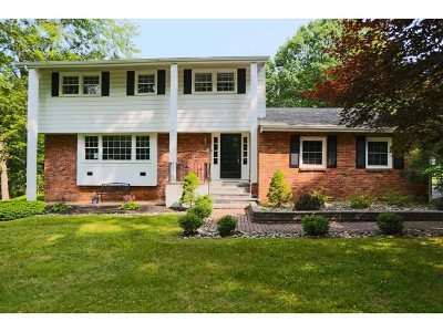East Fishkill Single Family Home For Sale: 37 Mountain Pass Road
