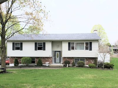 Dutchess County Single Family Home For Sale: 10 Crosby Ct