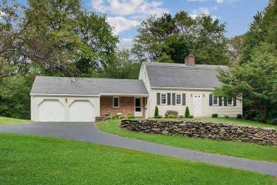 Dutchess County Single Family Home For Sale: 325 Diddell Rd