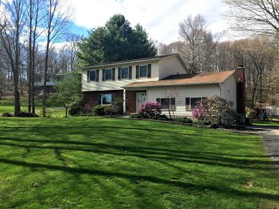 East Fishkill Single Family Home For Sale: 32 Newhard Place