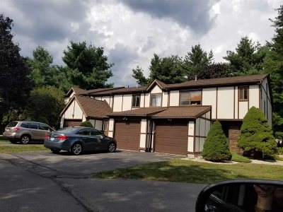 Poughkeepsie Twp Condo/Townhouse For Sale: 28 Amber Court