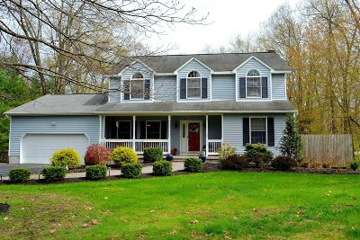 East Fishkill Single Family Home For Sale: 108 Wimmer Rd
