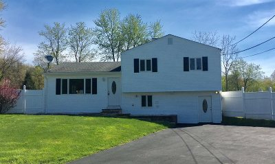 Fishkill Single Family Home For Sale: 7 Alan Road