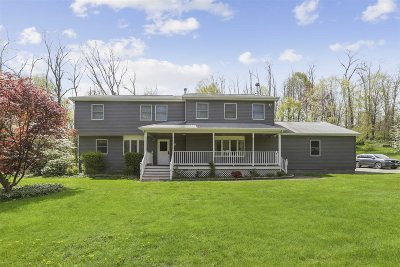 East Fishkill Single Family Home For Sale: 209 Augusta Dr