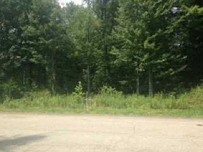 Fishkill Residential Lots & Land For Sale: Appalachian East E