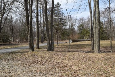 Wappinger Residential Lots & Land For Sale: 26 Relyea Terrace