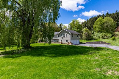 Pleasant Valley Single Family Home For Sale: 95 Forest Valley Rd