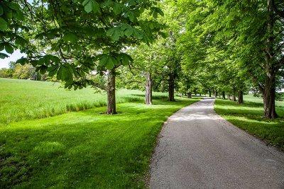 Dutchess County Rental For Rent: 57 Edgewood Lane