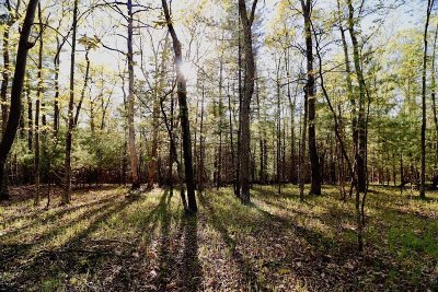 Marbletown NY Residential Lots & Land For Sale: $299,000